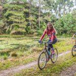 Passeio Ciclístico da Primavera de Pinhais será neste domingo