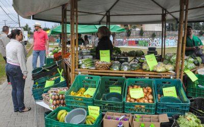 Feira Livre vai comercializar frutas, verduras e legumes a preço único de R$2,29 o quilo