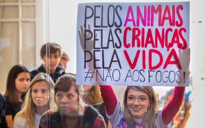 Proibição a fogos de alto impacto e de tiro aprovada em 1º turno em Curitiba